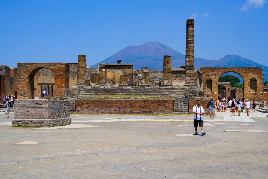 Travel etc Skip-the-line Pompeii and Mount Vesuvius From Positano