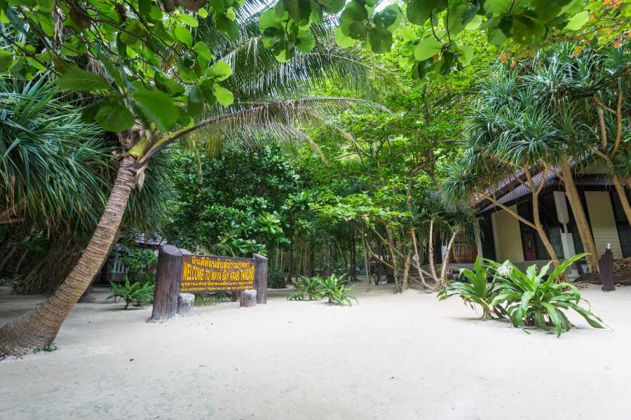 AMICI MIEI PHUKET TRAVEL AGENCY PHI PHI ISLAND GIRO AL CONTRARIO (AM20)
