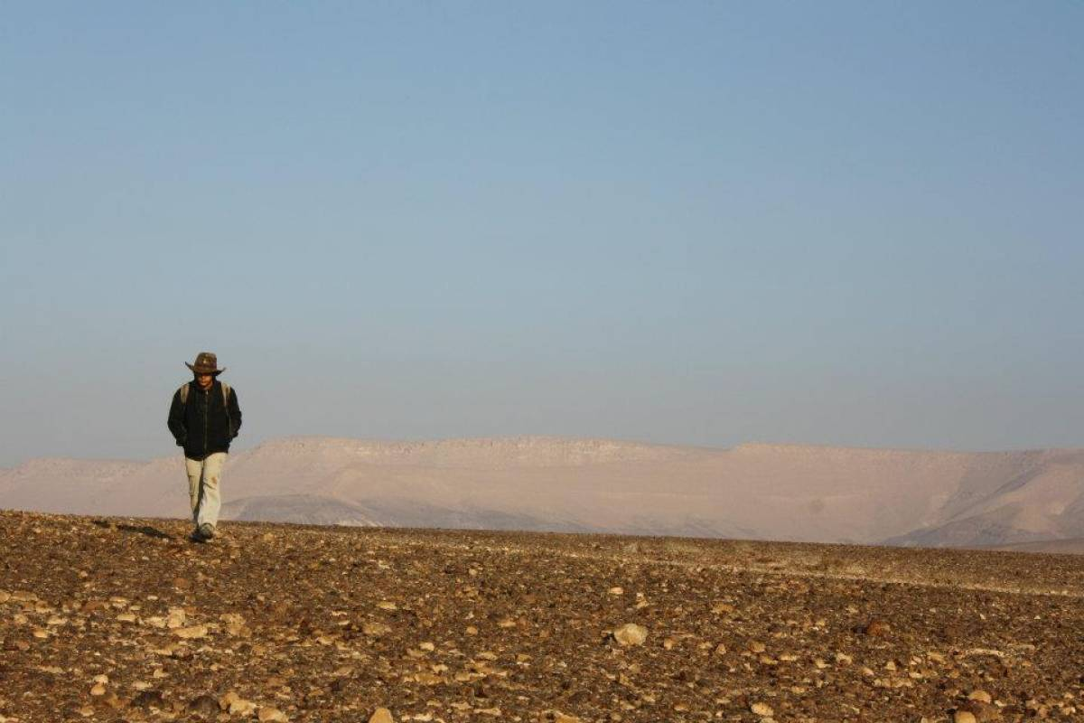 Wild-Trails The Top Desert Trek in Israel