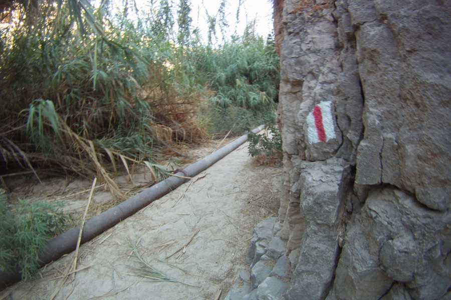 Wild-Trails Wędrówka do Pustynnej Oazy - Wadi Al Qelt