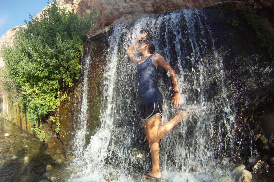 Wild-Trails Wüste, Oase, Wandern - Wadi Al Qelt