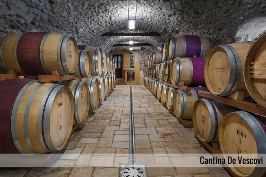 Enjoy33 Val dell'Adige Wine Tour