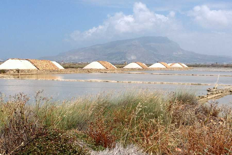 Travel Taste Sicily by Egatour Viaggi Trapani Saltpans Reserve