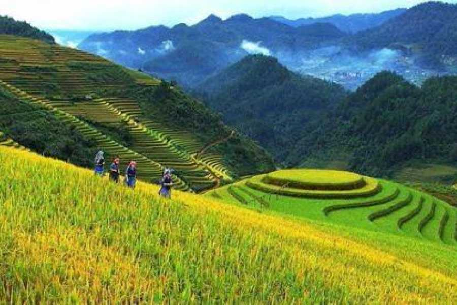 Friends Travel Vietnam Mountain To The Sea