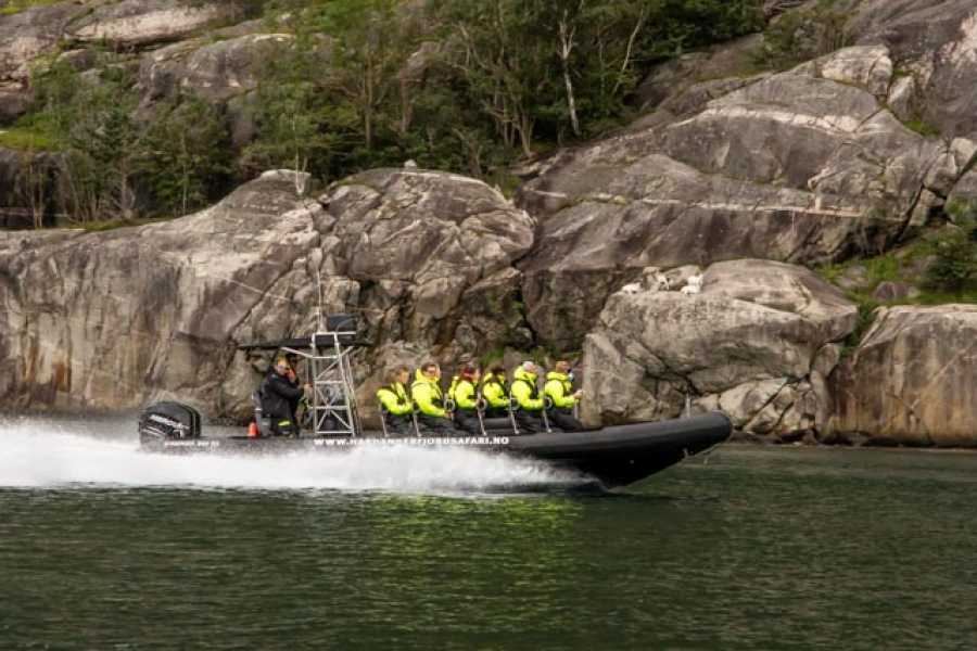 Hardanger Fjordsafari AS RIB Tour for 1 Hour