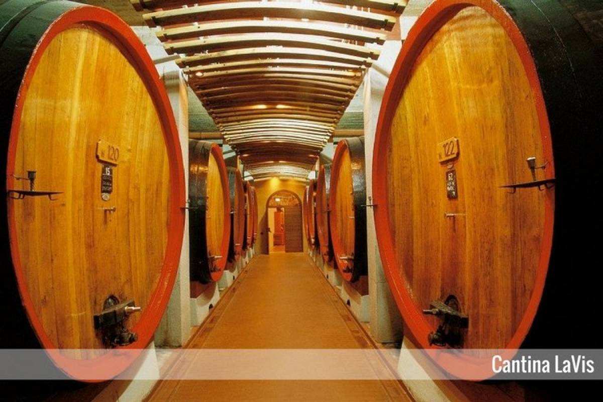 Enjoy33 Tour del vino Valle dell'Adige & Trento | 2 giorni