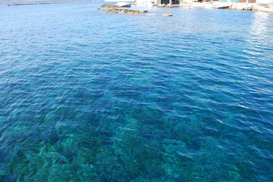 Travel Taste Sicily by Egatour Viaggi Egadi a Vela