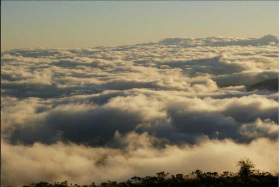 mystic lands peru MANU ZONA DE RESERVA 8D/7N