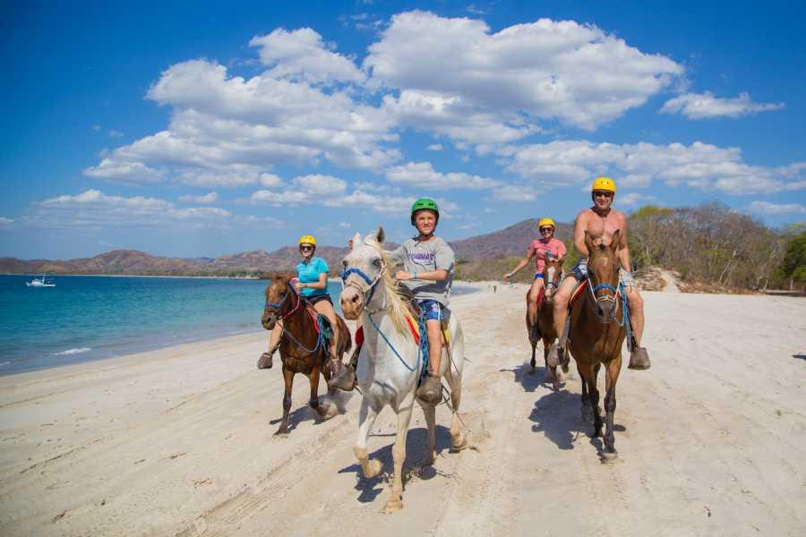 Congo Trail Canopy Tour ATV Horseback Combo
