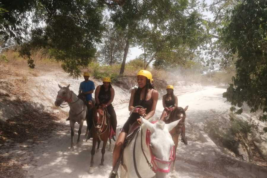 Congo Canopy ATV Horseback Combo