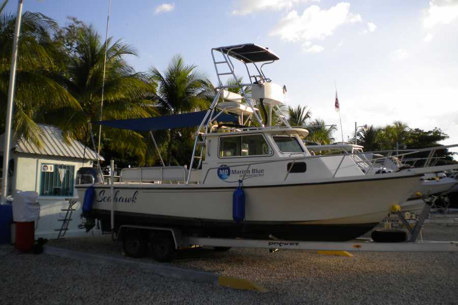 Marina Blue Haiti Scuba Diving Charter
