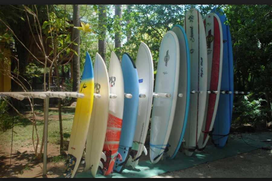 Pura Vida Casas Adventures Rentals: Surf Board