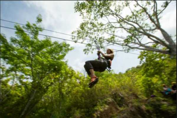 1. Adventure Park: Zip Line