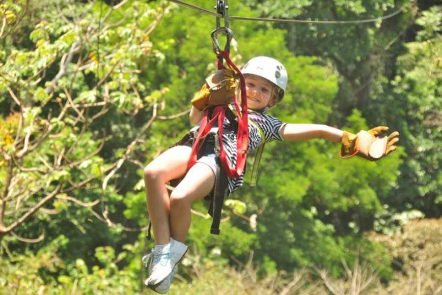 Pura Vida Casas Adventures Los Suenos:  Zip Line