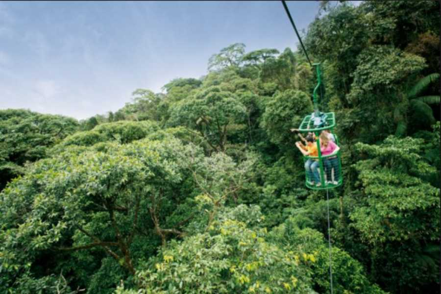 Pura Vida Casas Adventures AERIAL RAINFOREST TRAM