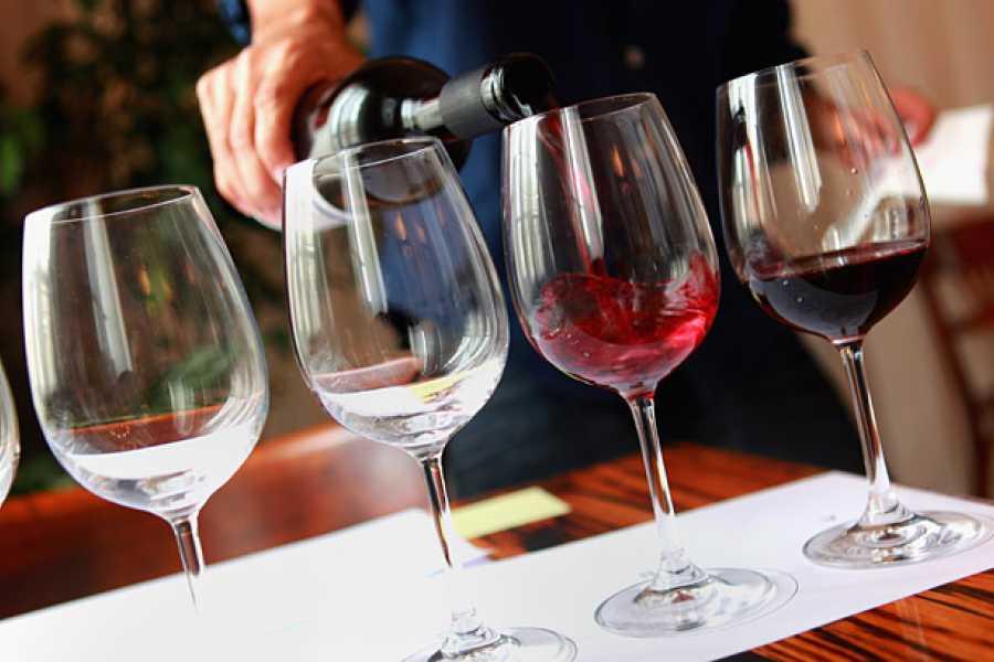Travel Taste Sicily by Egatour Viaggi Marsala Saltpans Reserve & Visit in Winery