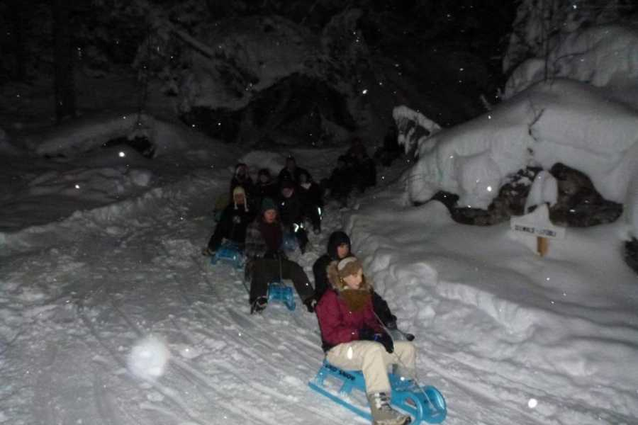 Outdoor Interlaken AG 알프스 야간 눈썰매 + 저녁 (Night Sledding with Dinner)