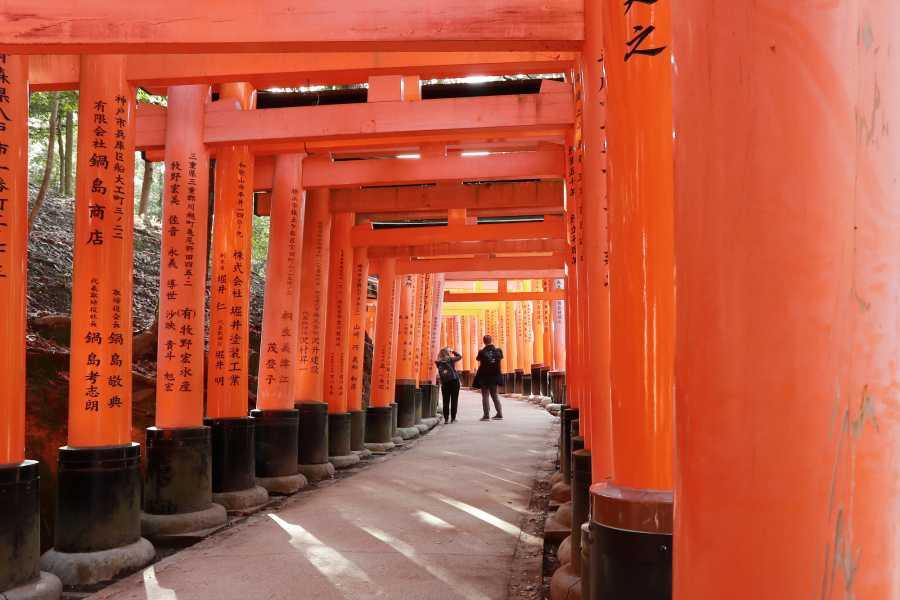 HanaTour ITC Discover Japan 7 Days