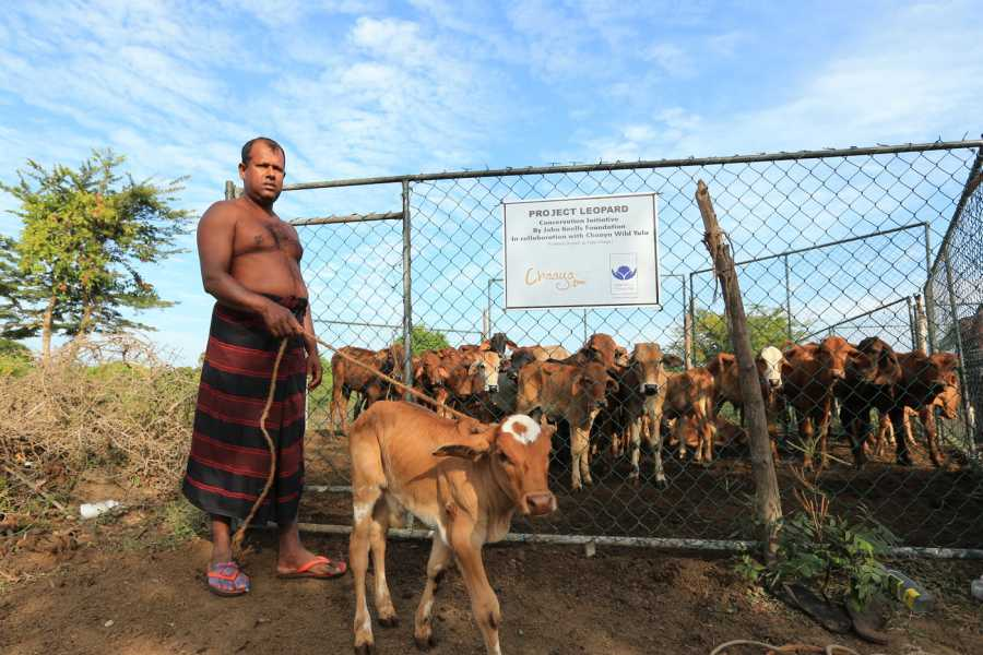 Cinnamon Holidays Private Limited A Morning with a Dairy Farmer - Yala