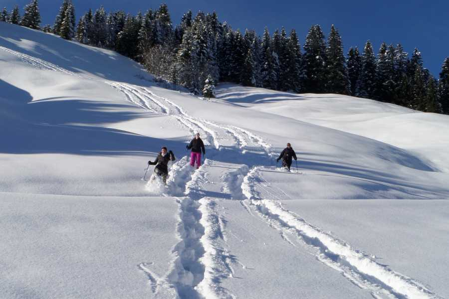 Outdoor Interlaken AG Snowshoe Tour