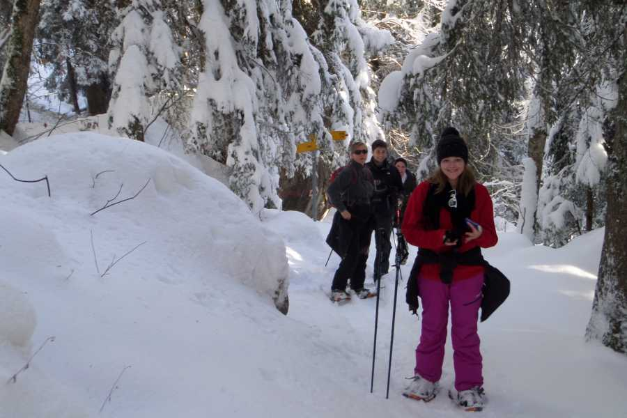 Outdoor Interlaken AG 설산 하이킹 투어 (Snowshoe Tour)
