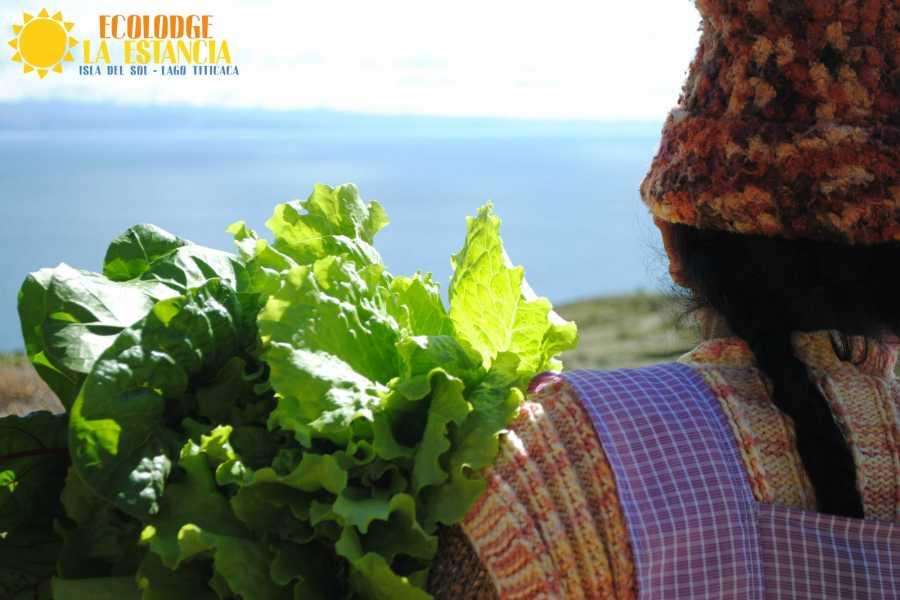 Late Bolivia LAGO TITICACA: ISLAS DEL SOL Y DE LA LUNA
