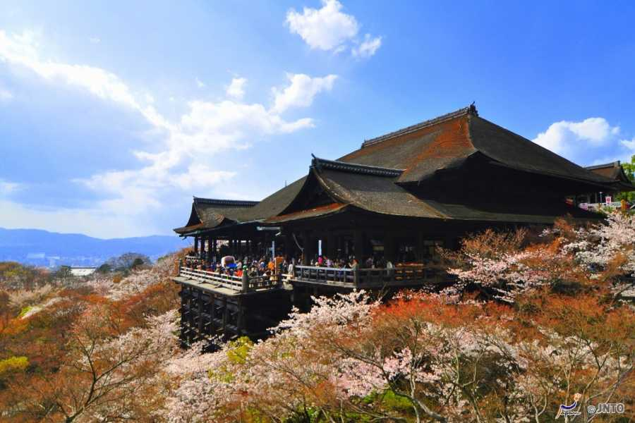 HanaTour ITC Explore Japan 7 Days