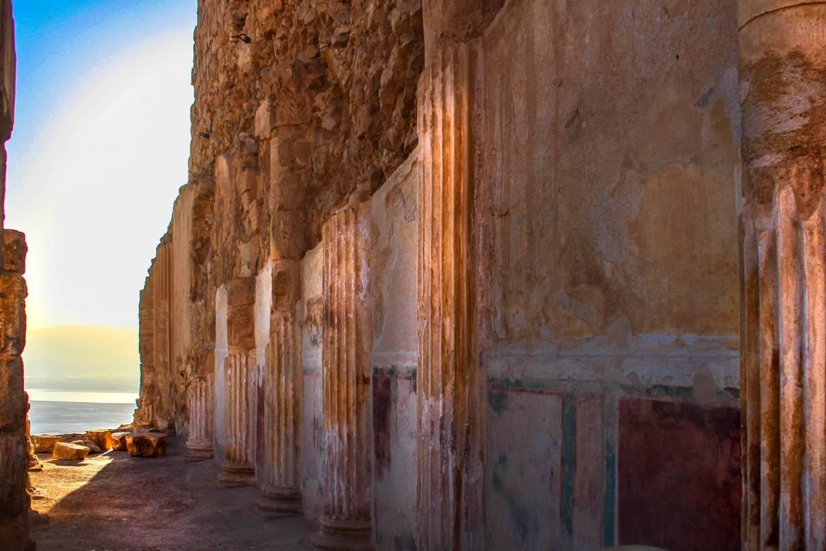 Wild-Trails Masada FREE Tour