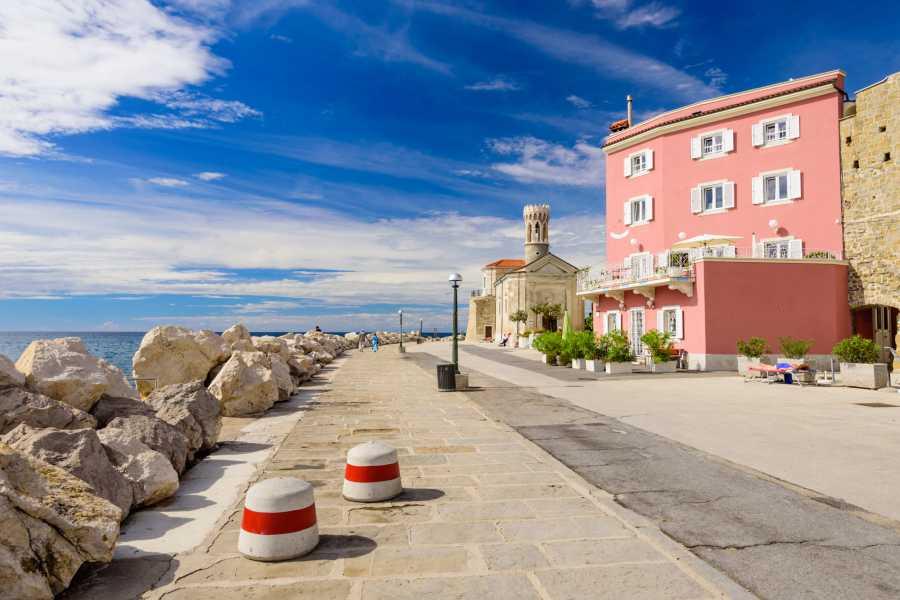 ToDoInSlovenia, brand of Kompas d.d. Private tour to Lipica & Coastal City of Piran - Touch of Karst & the Mediterranean