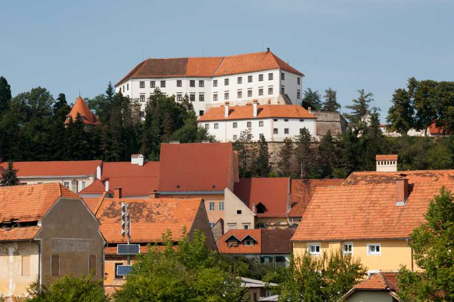 ToDoInSlovenia, brand of Kompas d.d. Private tour to Maribor & Ptuj & Žiče Carthusian Monastery - Where the Medival Meets the Present