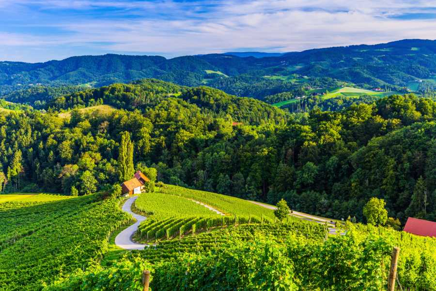 ToDoInSlovenia, brand of Kompas d.d. Private tour to Maribor, Ptuj and Heart of the vineyards