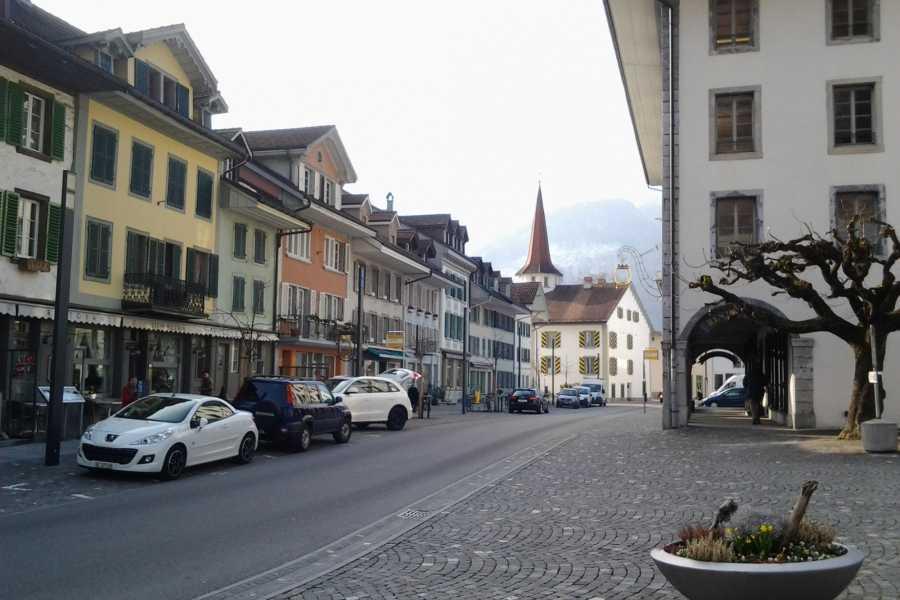 SwissTravelGuide Interlaken City plus Harder Mountain (Top of Interlaken)