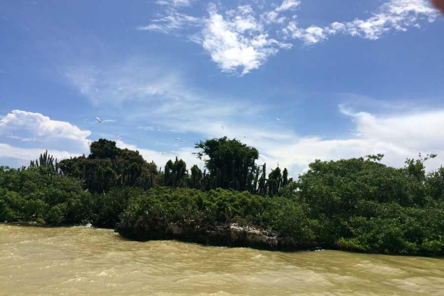 Ecotour Barahona Bahia & Laguna - Combo de la Naturaleza