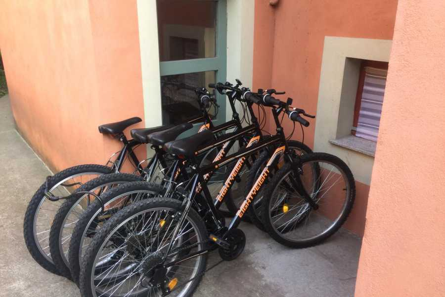 Living Local Hungary Bike Rental