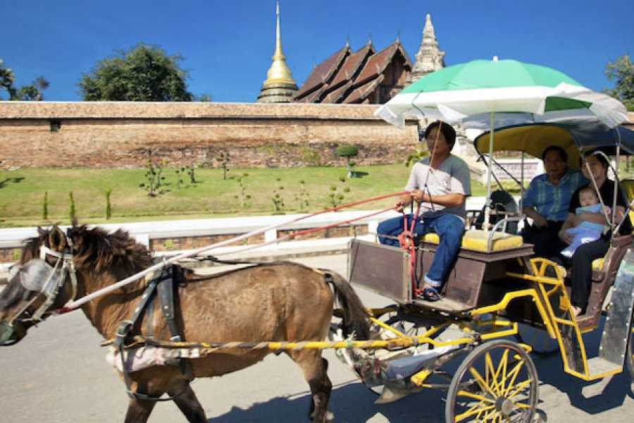 AMICI MIEI PHUKET TRAVEL AGENCY Private tour - Lamphun and Lampang Province …inside Lanna culture