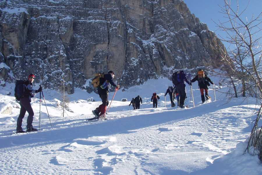 TRAVELSPORT Outdoor Activities RIFUGIO DIBONA, CIASPOLARE IN UN BOSCO DA FAVOLA