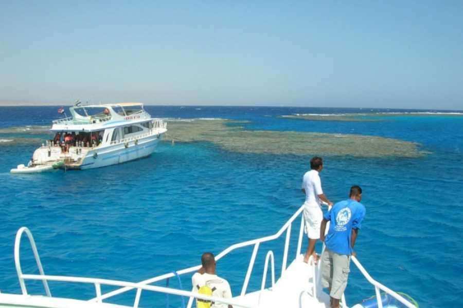 Marsa alam tours Snorkeling trip to Satayh Reef dolphin house from Marsa alam