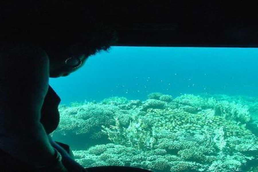 Marsa alam tours Sindbad Submarine trip in Hurghada