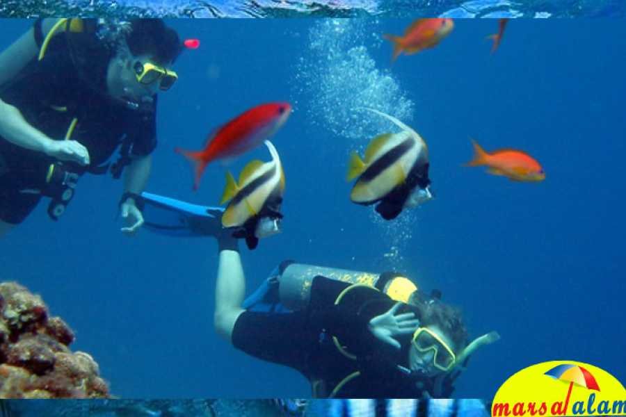 Marsa alam tours Scuba diving trip from Hurghada