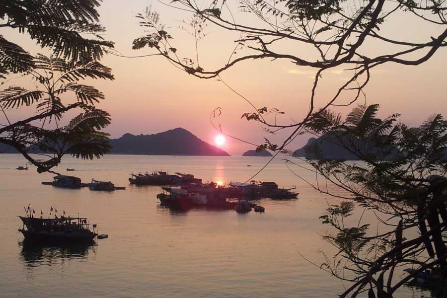 Friends Travel Vietnam Cat Ba 01 Day Tour - Boat Trip
