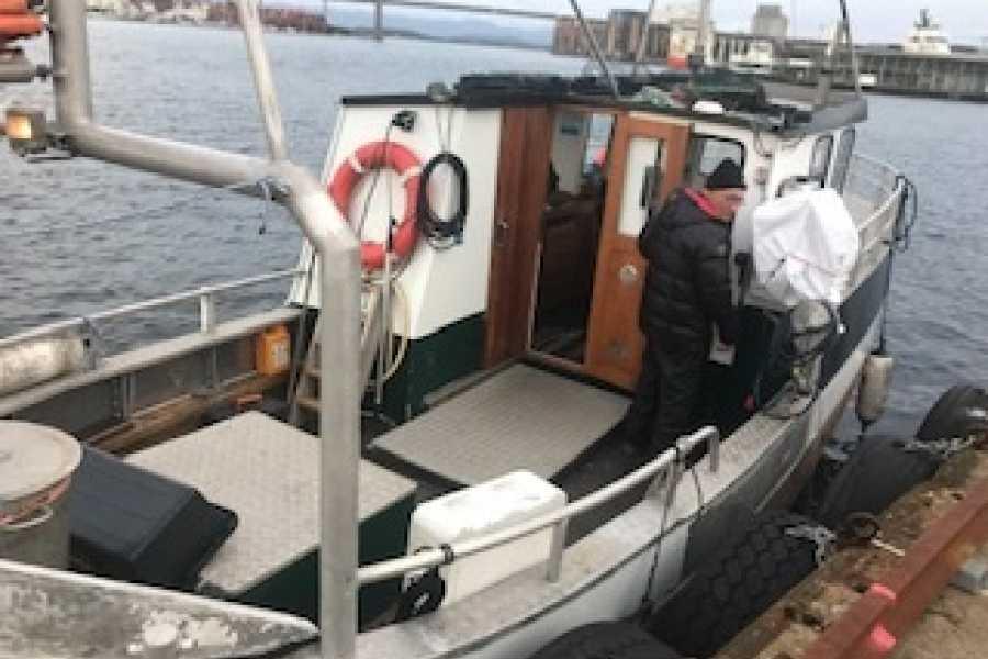 Fishing Stavanger 3 hr Deep Water Fishing Winter Season (10AM - 1PM)