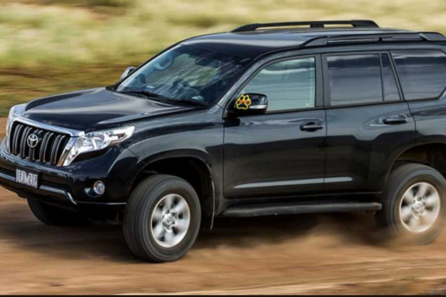 Pura Vida Casas Adventures Zoom Rental Car: Large SUV Toyota Prado