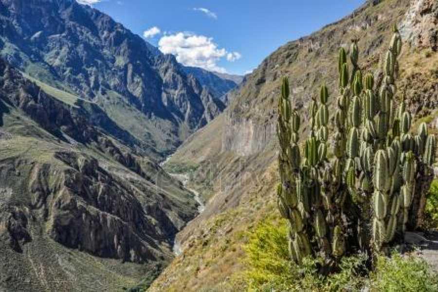 mystic lands peru COLCA 3D/2N SERVICIO PRIVADO