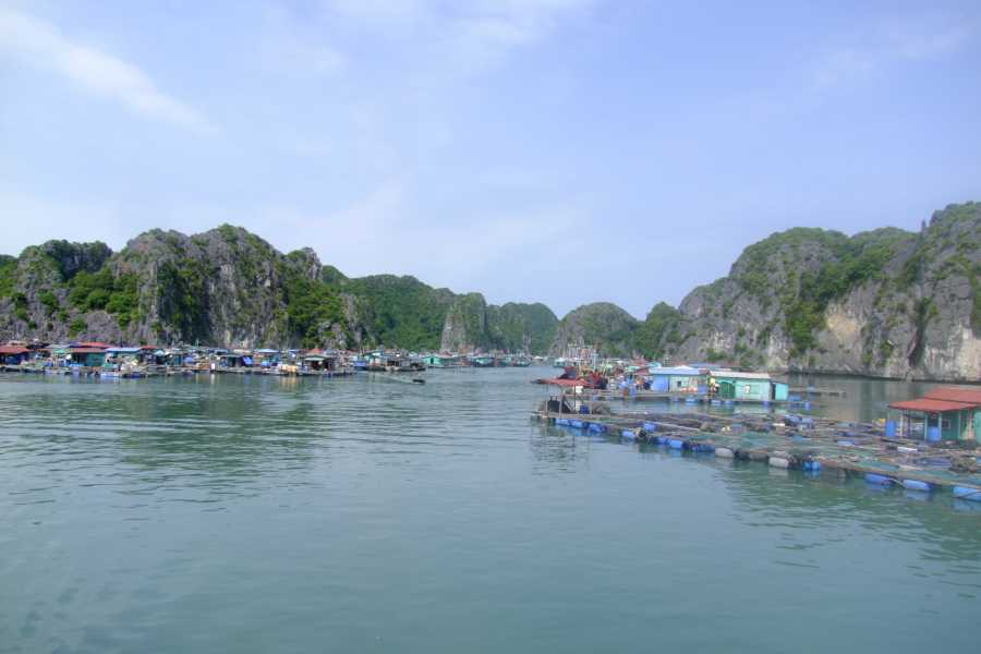 Friends Travel Vietnam 2D1N Real Cat Ba Experience