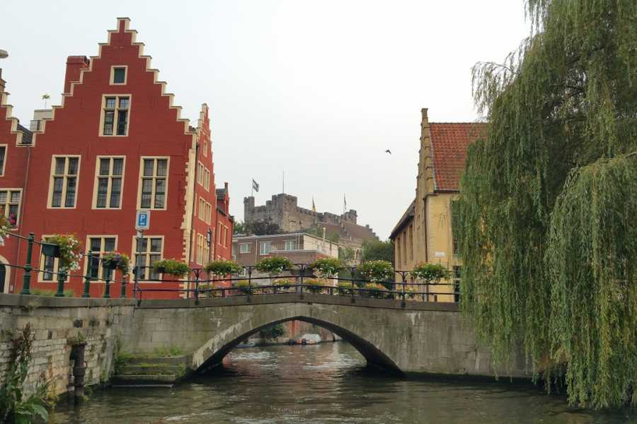 CRUISE EXPRESS Round-Trip Shuttle Service from Zeebrugge to Ghent