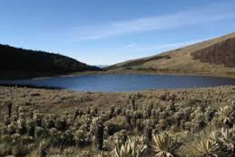 mystic lands peru VISITA A LA LAGUNA DE MEJÍA Y MOLLENDO