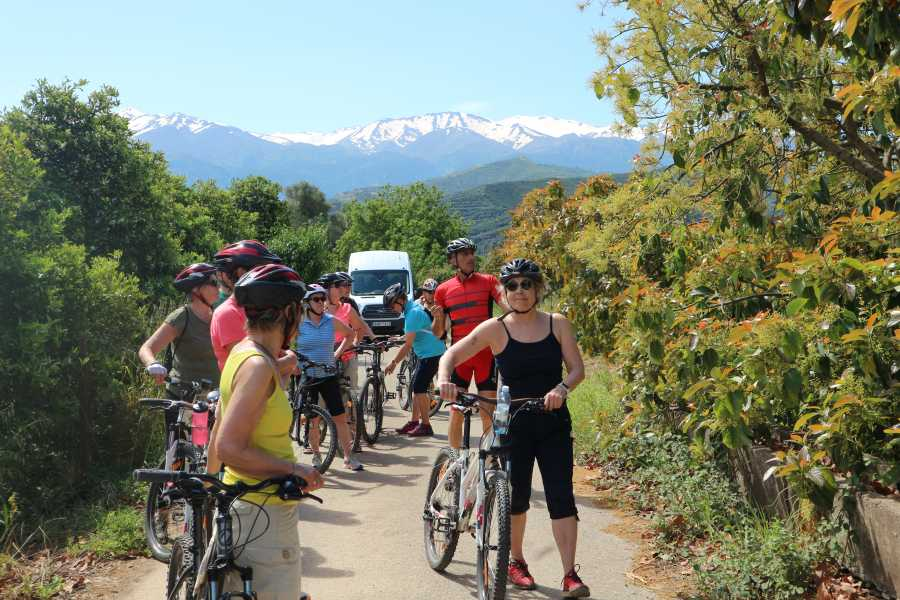 Destination Platanias EASY 1/2 DAY-BIKE TOUR - Deres - 45 EUR