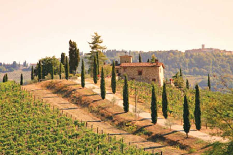 ACCORD Italy Smart Tours & Experiences GRAND TOUR DEL VINO NEL CHIANTI - TOUR PRIVATO