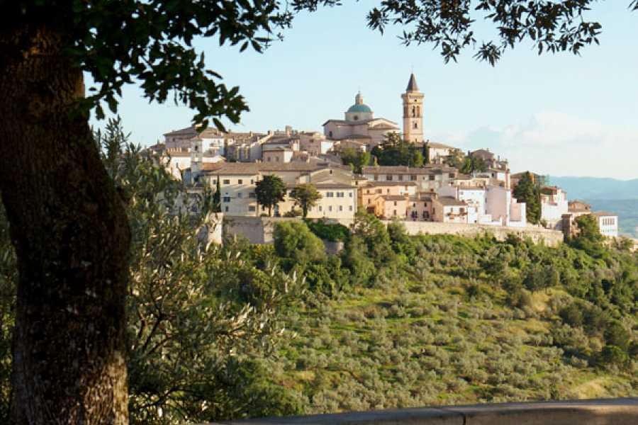 ACCORD Italy Smart Tours & Experiences LEONARDO DA VINCI – LE ORIGINI DI UN GENIO - TOUR IN MINIVAN