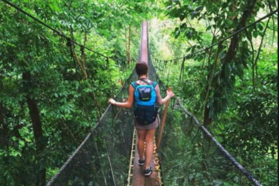 Pura Vida Casas Adventures RAIN MAKER DAY TOUR